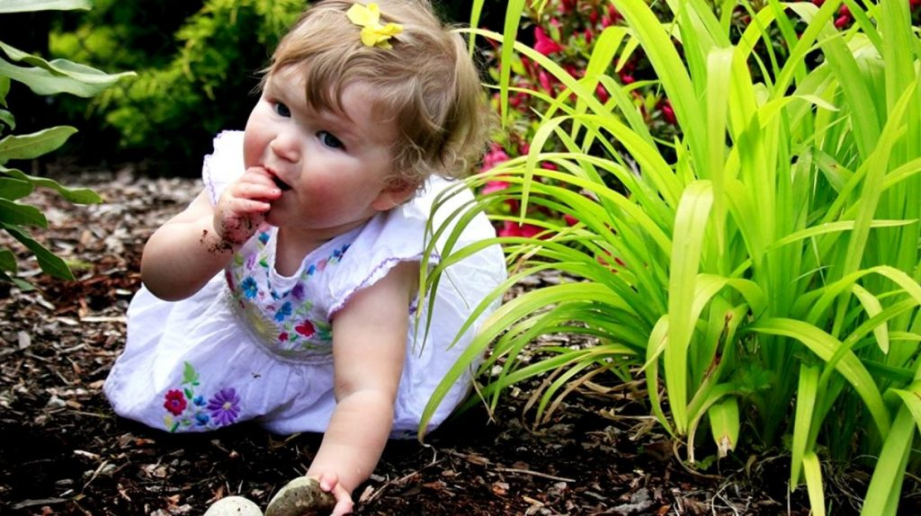 How to Stop a Child from Eating Soil?