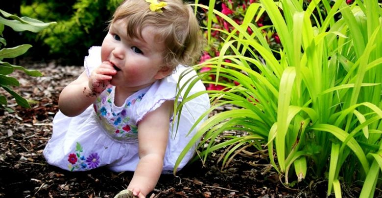 How to Stop a Child from Eating Soil? Learn from Dr. Qaisrani