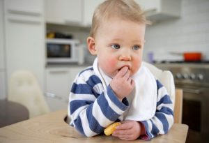 why do toddlers put everything in their mouth?
